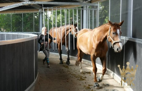 Track roof for horse exerciser with round fencing