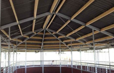 Rail-Gliding Horse exerciser with closed roof