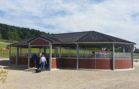 Horsewalker installed in Switzerland