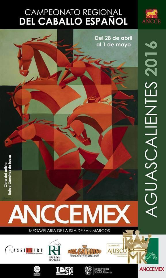 Poster ANCCEMEX Aguascalientes