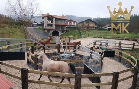 Noria de equinos