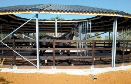 Track roof for horsewalker