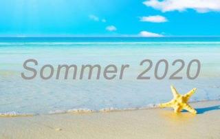 Summer 2020 DE