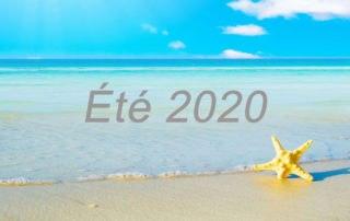 Summer 2020 FR